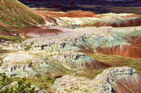 Overview of the Painted Desert